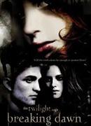 Twilight sága: Rozbřesk (2011)