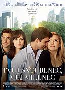 Tvůj snoubenec, můj milenec (2011)