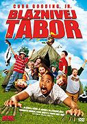 Bláznivej tábor (2007)