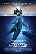 Máme rádi velryby (2012)