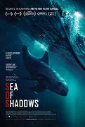 Moře stínů (2019)